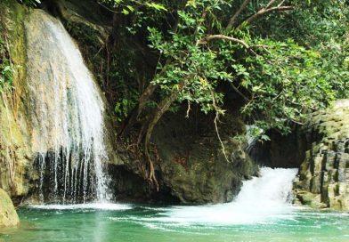 Explore Komodo & Flores Land Tour 8D/7N