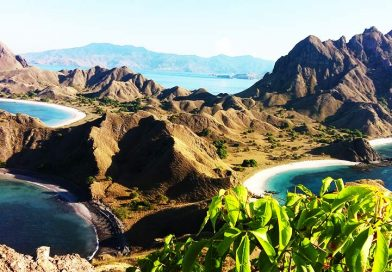 Komodo Excursion tour 4D/3N